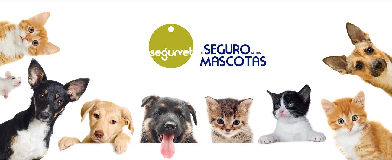 ¡Nuestra entrevista para el suplemento de La Razón 'Nuestras mascotas', no te la pierdas!