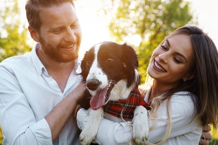 puede-nuestra-mascota-ayudarnos-a-encontrar-el-amor