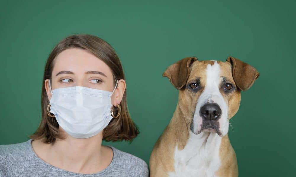 reglas-para-ir-al-veterinario-con-tu-mascota-en-la-nueva-normalidad