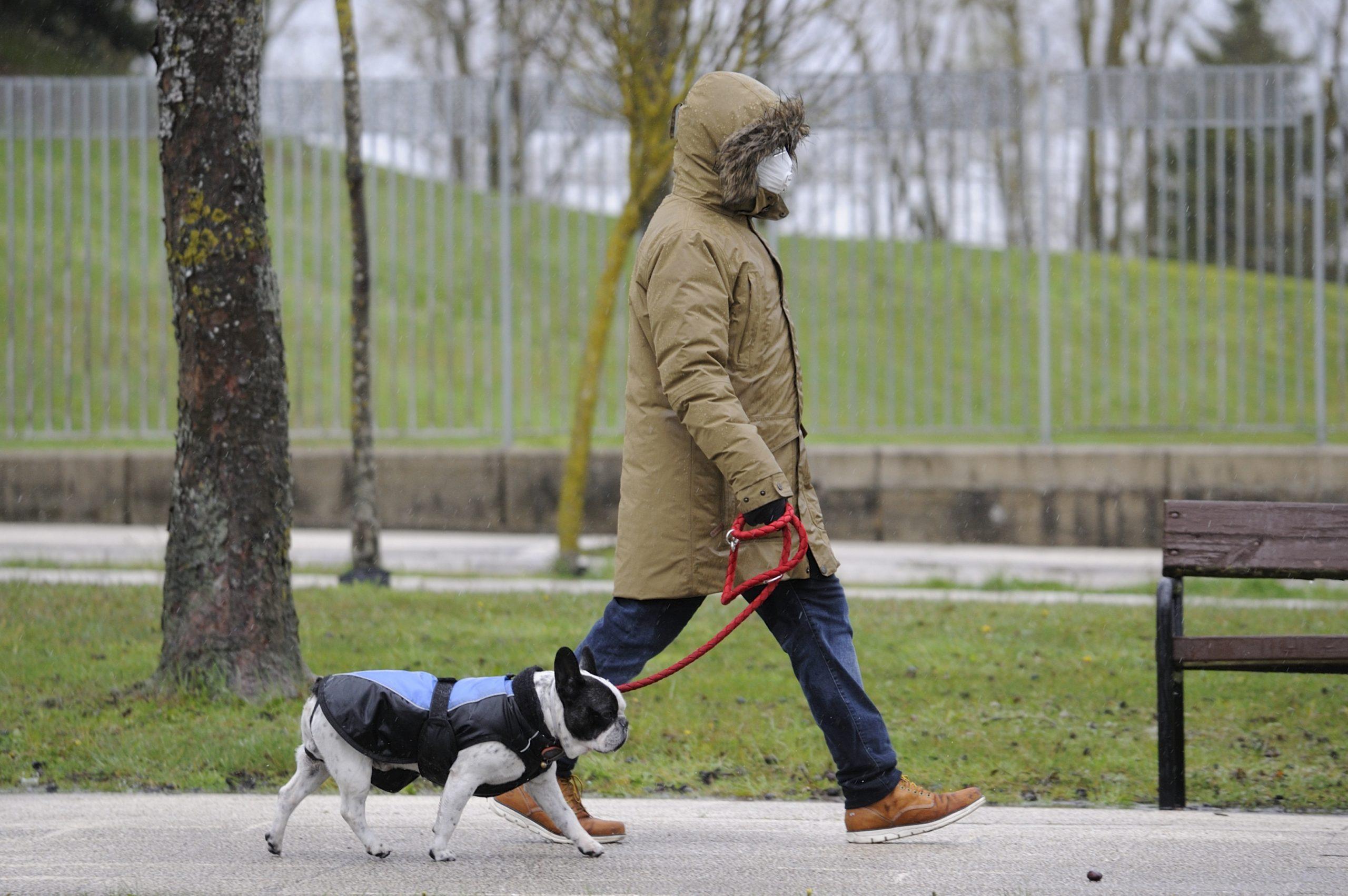 Recomendaciones para pasear a tu perro durante el nuevo Estado de Alarma